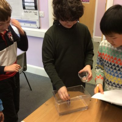 Which type of liquid do worms prefer?